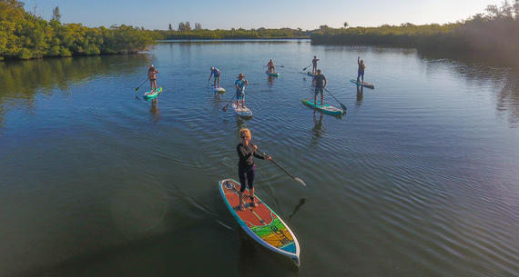 a group of people paddle boarding on the ocean