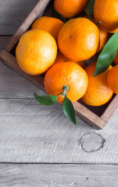 Countryside Citrus